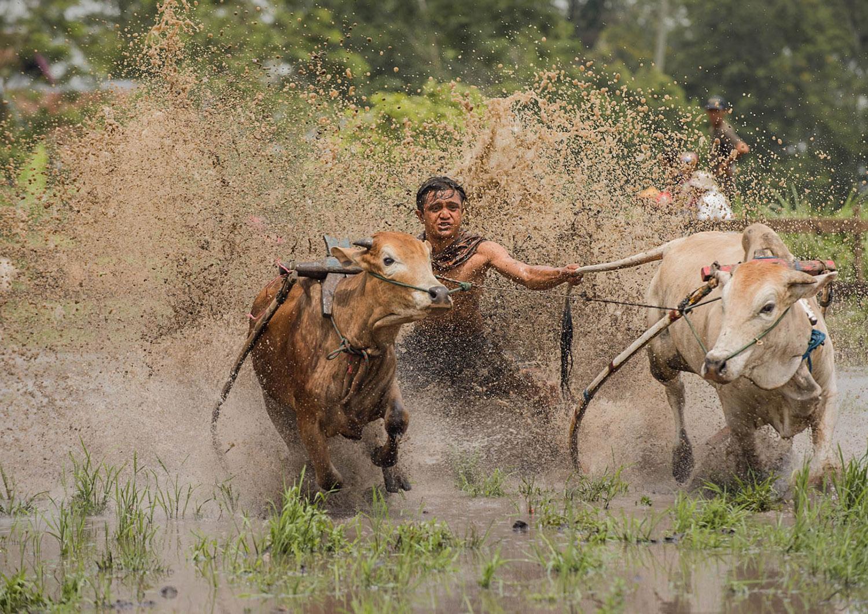 Co warto zobaczyć w Indonezji - Sumatra - blog podróżniczy
